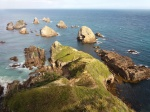 Nugget Point - Catlins