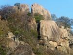 POR ZIMBABWE Y BOTSWANA, DE NOVATOS EN EL AFRICA AUSTRAL