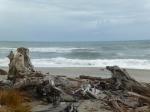 Mar de Tasmania