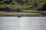 pescadores del Nilo