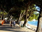 Día 7: Despedida de Dubrovnik, Frankfurt y vuelta a casa