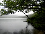 Loch Chon. The Trossachs. Escocia