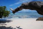 10 días de vacaciones en Seychelles