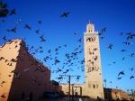 Marrakech express en Noviembre 2019