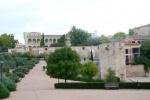 Visitar Guadalajara