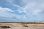 Paraje Natural de Punta Entinas-Sabinar. Almería