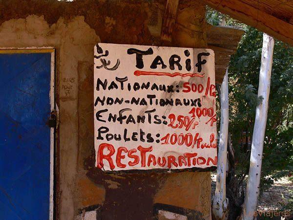 Sacred Crocodriles- Bazoulé, near Ouagadougou - Burkina Faso Cocodrilos Sagrados en Bazoulé, cerca de Ouagadougou - Burkina Faso