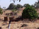 Ir a Foto: Poblado Lobi  Go to Photo: Lobi Village