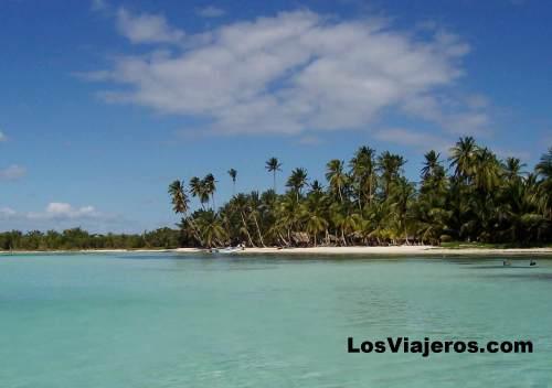 Playa camino de isla Saona - Puntacana - Dominicana Rep. Beautiful beach  - Puntacana - Dominican Rep.