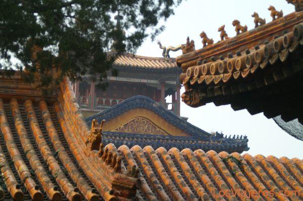 Tejados de Ciudad prohibida - Pekin - China Roofs of the Forbidden City - Beijing - China