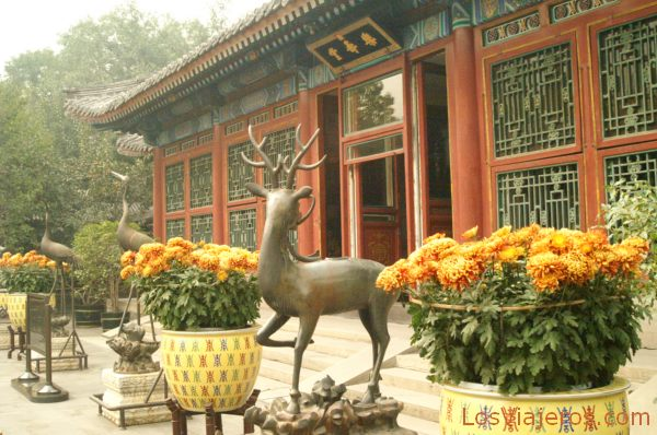 Jadines del Palacio de Verano - Pekin - China Gardens of the Summer Palace - Beijing - China