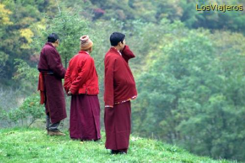 Parque Natural de Jiuzhaigou - China Jiuzhaigou Valley National Park - Sichuan- China