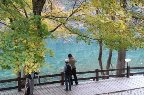 Jiuzhaigou en otoño- China Autumn in Jiuzhaigou Valley -Sichuan- China