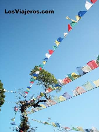 Prayer flags - Darjeeling - India Banderas de oracion - Darjeeling - India