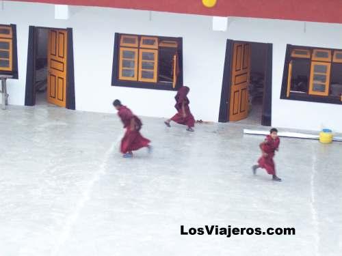 Monjes budistas jugando al futbol - Ghoom - India Buddhist Monks playing football - Ghoom - India