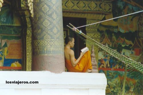 Monje en Wat Xieng Muan - Luang Prabang - Laos Monk reading in the pagoda. - Laos